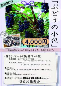 ぶどうの小包.jpg